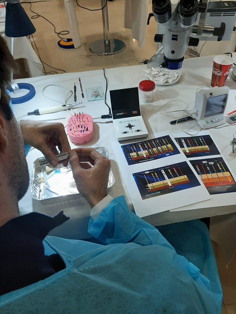 Endodoncia práctica